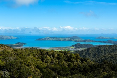 Coromandel town and coastline from above